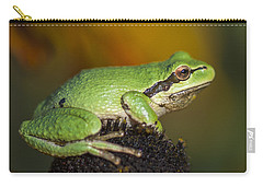 Treefrog On Rudbeckia Carry-all Pouch