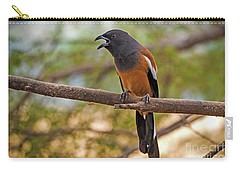 Treepie Calling Carry-all Pouch