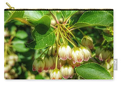 Tres Belle Carry-all Pouch by Isabella F Abbie Shores FRSA