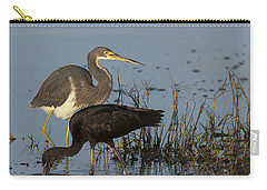 Tri-colored Heron And Glossy Ibis Carry-all Pouch