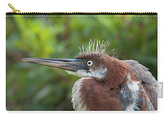 Tricolored Heron - Bad Hair Day Carry-all Pouch