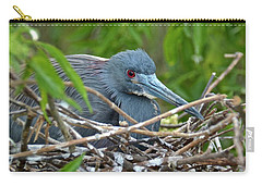 Nesting Tricolored Heron Carry-all Pouch