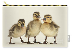 Triple Ducklings Carry-all Pouch