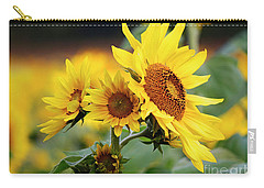 Triple Sun Beauties Carry-all Pouch