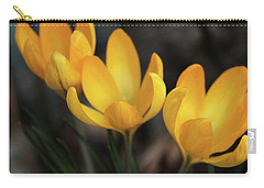 Carry-all Pouch featuring the photograph Triplets by Connie Handscomb