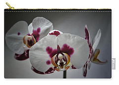 Carry-all Pouch featuring the photograph Triplets by Karen Stahlros