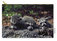 Carry-all Pouch featuring the photograph Triplets by Sally Weigand