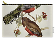 Trogon Collaris Carry-all Pouch