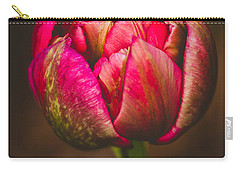 Carry-all Pouch featuring the photograph True Colors by Yvette Van Teeffelen