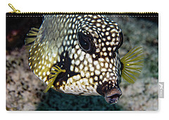 Carry-all Pouch featuring the photograph Trunkfish Portrait by Jean Noren