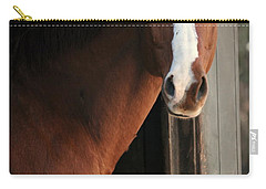Carry-all Pouch featuring the photograph T's Window by Angela Rath
