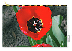 Carry-all Pouch featuring the photograph Tulip Trio by LeeAnn McLaneGoetz McLaneGoetzStudioLLCcom