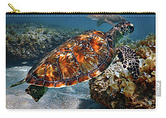 Turtle And Shark Swimming At Ocean Reef Park On Singer Island Florida Carry-all Pouch by Justin Kelefas
