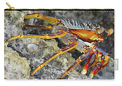 Turtle Bay Resort Watamu Kenya Rock Crab Carry-all Pouch by Exploramum Exploramum