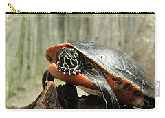 Turtle Neck Carry-all Pouch by David Stasiak