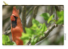 Tweeting Carry-all Pouch