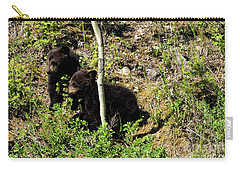 Twin Power Carry-all Pouch