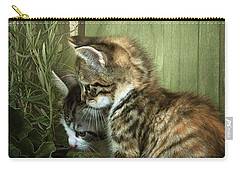 Two Cute Kittens Carry-all Pouch