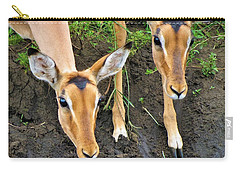 Two Impala Carry-all Pouch