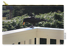 Carry-all Pouch featuring the photograph Two In The Beak by Marie Neder