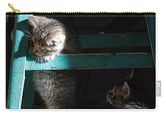 Carry-all Pouch featuring the photograph Two Kittens With Turquoise Chair by Doris Potter
