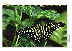 Two Tailed Jay Butterflies- Graphium Agamemnon Carry-all Pouch