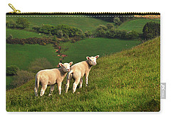 Two Welsh Lambs Carry-all Pouch