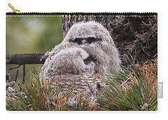 Two Whooo's  Carry-all Pouch