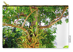 Carry-all Pouch featuring the photograph Under A Tropical Tree M by Francesca Mackenney