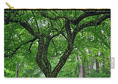 Carry-all Pouch featuring the photograph Under The Shade Tree by Tikvah's Hope
