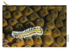 Carry-all Pouch featuring the photograph Undulating Bristle Worm by Jean Noren