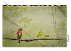 Until Spring Carry-all Pouch by Lois Bryan