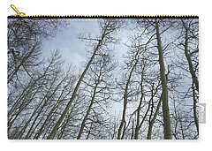 Up Through The Aspens Carry-all Pouch