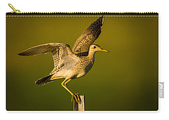 Upland Sandpiper On Steel Post Carry-all Pouch