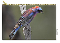 Varied Bunting Carry-all Pouch
