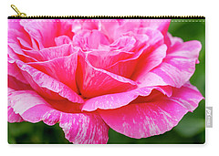 Variegated Pink And White Rose Petals Carry-all Pouch by Teri Virbickis