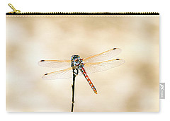 Carry-all Pouch featuring the photograph Varigated Meadowhawk Dragonfly Sympetrum Corruptum by Frank Wilson