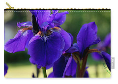 Carry-all Pouch featuring the photograph Velvet And Silk by Hanne Lore Koehler