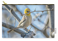 Verdin Collecting Nest Material Carry-all Pouch by Tam Ryan