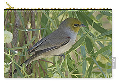 Carry-all Pouch featuring the photograph Verdin In Tree by Anne Rodkin