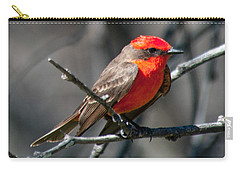 Carry-all Pouch featuring the photograph Vermilion Flycatcher by Dan McManus