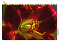 Vermilion Carry-all Pouch by Alana Thrower