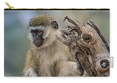 Vervet Monkey Just Watching Carry-all Pouch by Janis Knight