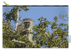 Vervet Monkey Perched In A Treetop Carry-all Pouch