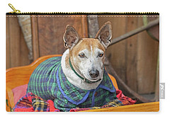 Carry-all Pouch featuring the photograph Very Old Pet Dog In Clothes On Own Bed by Patricia Hofmeester