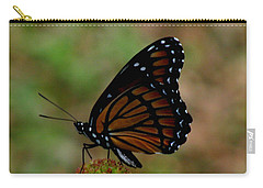 Viceroy Butterfly Carry-all Pouch by Donna Brown