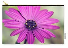 Carry-all Pouch featuring the photograph Vintage Purple Daisy  by Saija Lehtonen