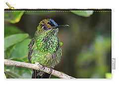 Violet-fronted Brilliiant Carry-all Pouch