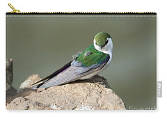 Violet-green Swallow Carry-all Pouch by Mike Dawson