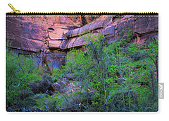 Virgin River Zion National Park Carry-all Pouch